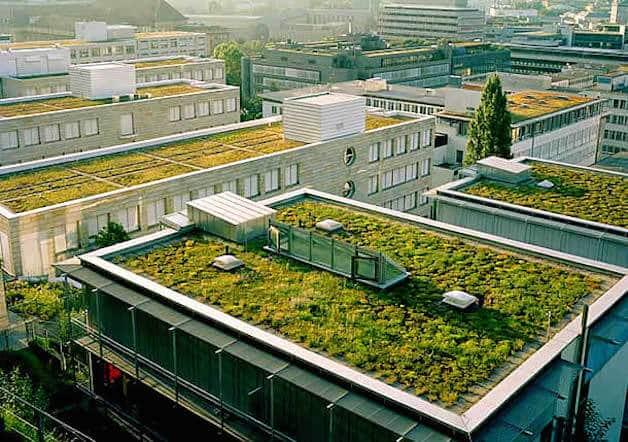 Telhado Verde na França