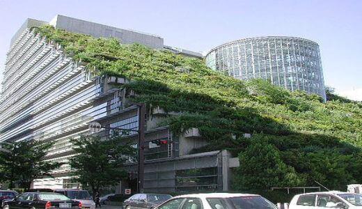 Telhado Verde em Nova York